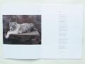 Charlotte Dumas: Tiger Tiger (spread) / © Gabriele Götz